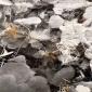 湖北省咸��市赤壁市 18650�池回收 �X�z回收 高�r回收